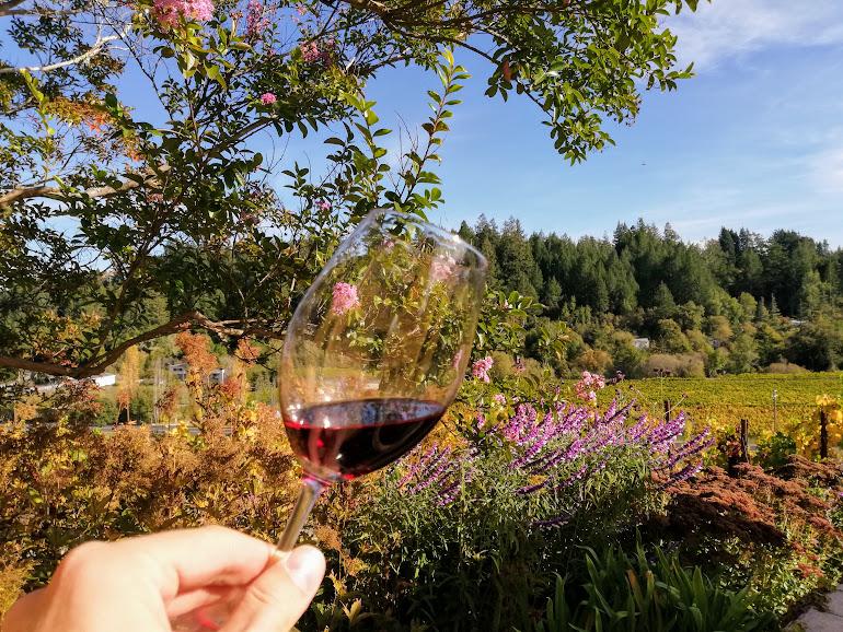 Я вам покажу,как вино американское пить! Винодельни в Сан-Франциско